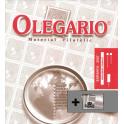 SPAIN 1994/2001 SF CS OLEGARIO SPANISH