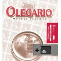 SPAIN 2007 SF CT OLEGARIO CATALAN