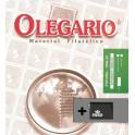 EP 2008 SF/B 43 VIOLENCEHERITAGE OLEGARIO SPANISH