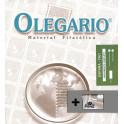 EP 2008 SF 43 VIOLENCEHERITAGE OLEGARIO CATALAN