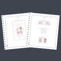 BINDER LUXE ESPAÑA CS GREEN OLEGARIO SPANISH