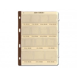 BINDER COINS 290X310 BROWN 15R UNI SAFI CATALAN