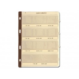 BINDER COINS 290X310 VERD 15R UNI SAFI 013 SPANISH