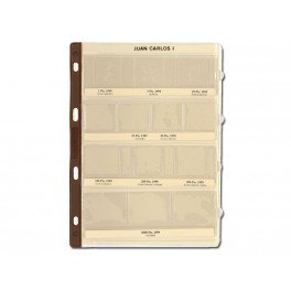 BINDER COINS 270X320 BROWN 4R PRACTIC SAFI SPANISH