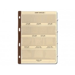 BINDER COINS 270X320 BROWN 4R PRACTIC SAFI CATALAN