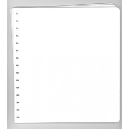 ANDORRE SPANISH 2004 SF ANFIL SPANISH