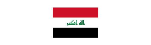 Ano 2010