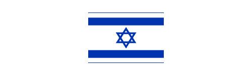 Any 2009