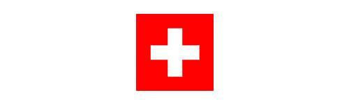 Any 2010