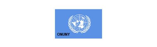 Any 1987