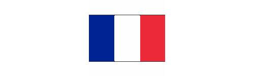 Year 1809